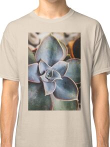 close up of succulent Classic T-Shirt