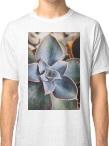 close up of succulent Classic T-Shirt