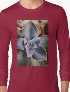close up of succulent Long Sleeve T-Shirt