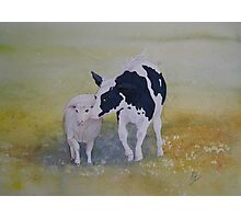 Best of Friends Watercolour Painting Photographic Print