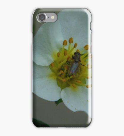 Fly Flower iPhone Case/Skin