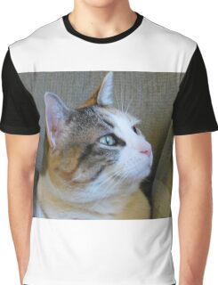 Kitty Cat Calico Graphic T-Shirt