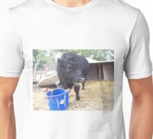 Some Foods Unisex T-Shirt
