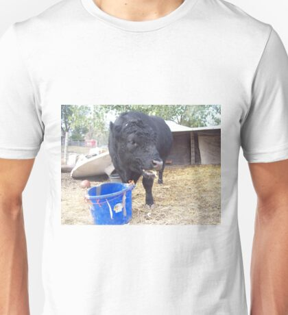 Some Foods T-Shirt