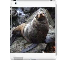 Nz Fur Seal iPad Case/Skin