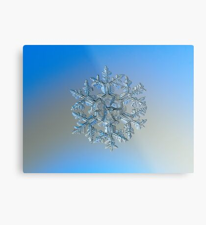 Gardener's dream, real snowflake macro photo Metal Print