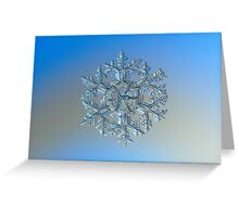 Gardener's dream, real snowflake macro photo Greeting Card