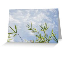 Bamboo Sky Greeting Card