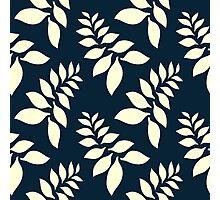 Fern - Pattern Photographic Print