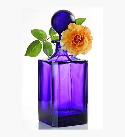 Rose on a Blue Bottle Photographic Print