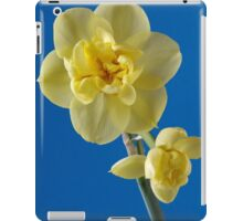 Yellow Narcissus iPad Case/Skin