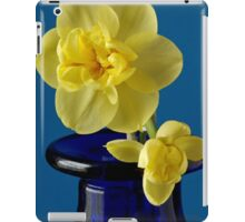 Narcissus on a Blue Bottle iPad Case/Skin