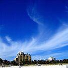 Miami Blue by lotusblossom