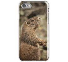 Marmot Alert iPhone Case/Skin