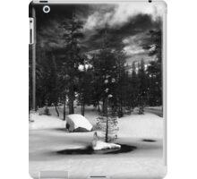 Woods Lake iPad Case/Skin