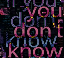 You Don't Know Me (photo) Sticker