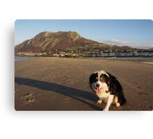"Laddie says ""Welcome to Llanfairfechan"" Canvas Print"