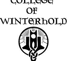 Skyrim College of Winterhold by hinomaru17