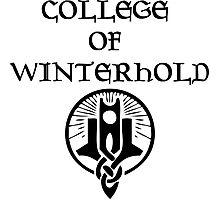 Skyrim College of Winterhold Photographic Print