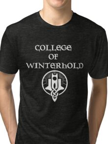 Skyrim College of Winterhold Tri-blend T-Shirt
