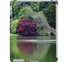 Colorful Reflections  iPad Case/Skin