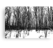A Black And White Winter Canvas Print