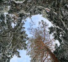 Beautiful snowy forest landscape, season concept, Alsace, France Sticker