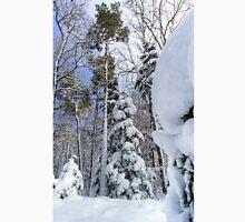 Beautiful snowy forest landscape, season concept, Alsace, France Classic T-Shirt