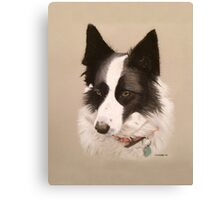 Mia the stunning Border Collie Canvas Print