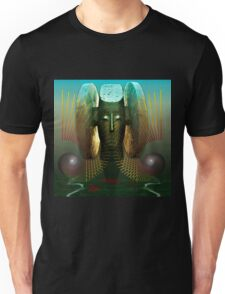 Order And Serenity Unisex T-Shirt