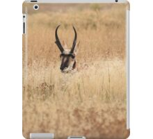 Pronghorn in the Tall Grass iPad Case/Skin