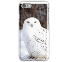 Beautiful Snowy Owl iPhone Case/Skin