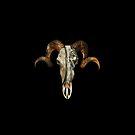 Godisnowhere666 Skull  by Peta Duggan
