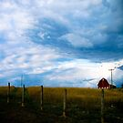Storm Chase 2008 number 2 by redhairedgirl