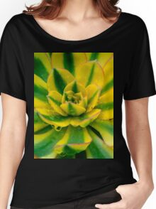 Echeveria Compton Carousel Cactus Women's Relaxed Fit T-Shirt