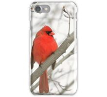 Eye on You Cardinal iPhone Case/Skin