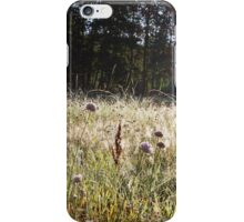Sunrise through a grassy spider webs iPhone Case/Skin