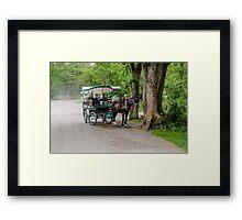 Kerry Scene  Framed Print