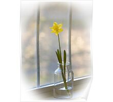 Touch of Spring Poster