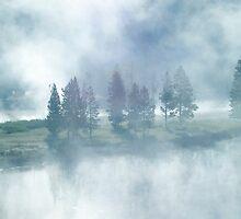 Misty Forest by Julie Luke Art Work