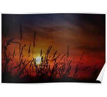 Nocturnal Sunset Poster