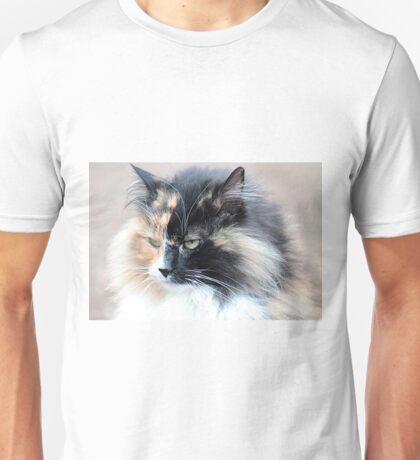 Beautiful kitty Unisex T-Shirt