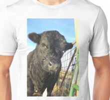 Cold Season! Unisex T-Shirt