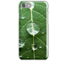 Water Droplets on Leaf iPhone Case/Skin