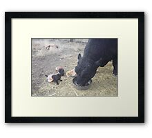 Turkey for Lunch! Framed Print