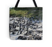 Penguin Colony in False Bay at the Boulders Tote Bag