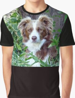 Beauty In Camouflage - Border Collie - NZ Graphic T-Shirt