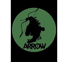 Vigilante Arrow Photographic Print
