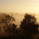 fog bound valley ~ near Gulgong NSW by Jan Stead JEMproductions