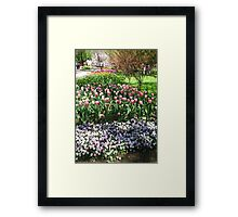 Tulip Time in Australia 13 Photograph by Heather Holland  Framed Print